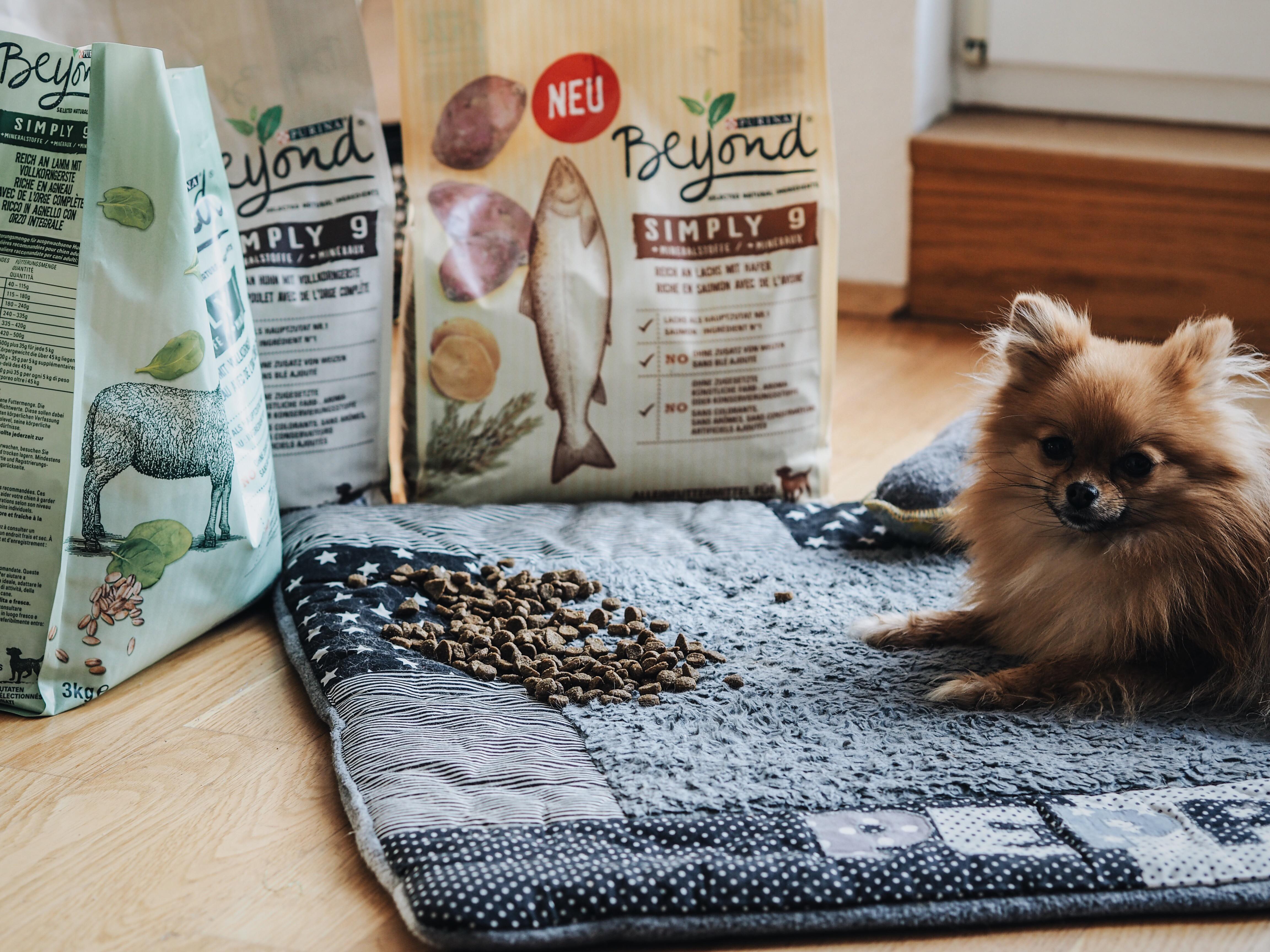 #healthylifestyle – Das gibt's jetzt auch für den Hund!